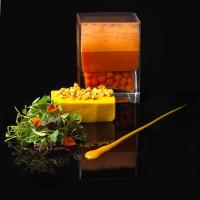 Carrot-Terrine